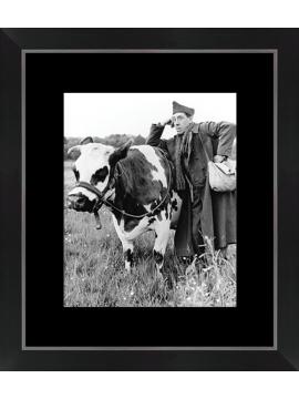 Photo cinéma La Vache et le Prisonnier - Fernandel